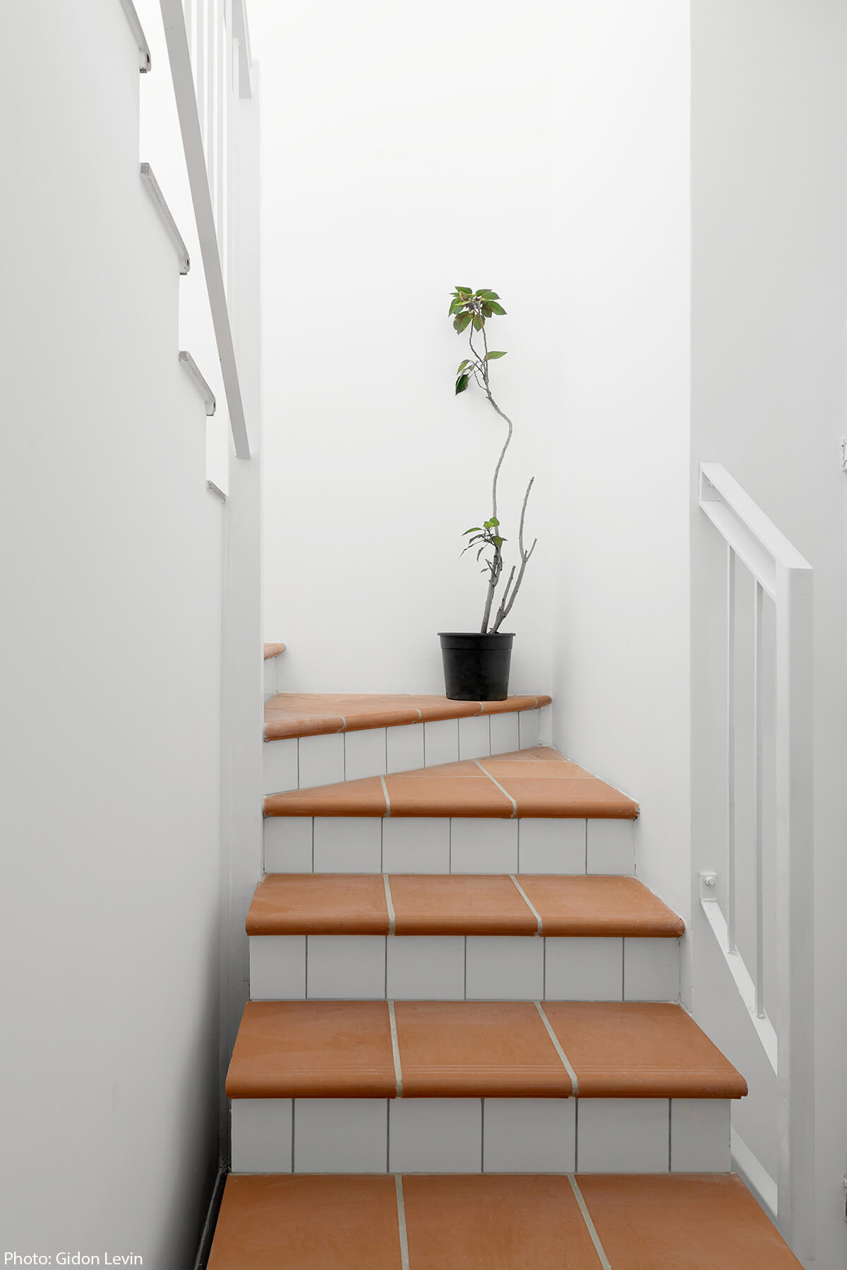 Terracotta stairs design by Jonathan Canetti Architecture & Design - Fineshmaker