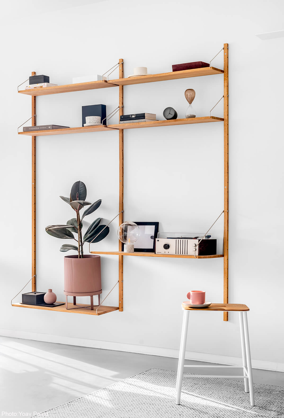 Modern Minimalist Shelf
